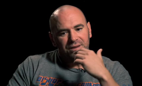 Dana White says 2017 is UFC's best year ever