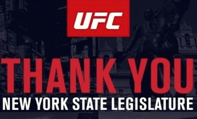 MMA legalized in New York after 19 years