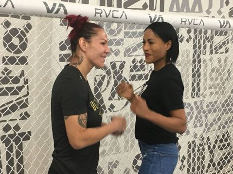 Cecilia Braekhus says Cris Cyborg's speed will surprise Holly Holm at UFC 219