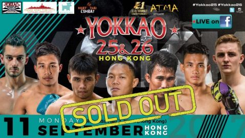 YOKKAO 25 26 is sold out!